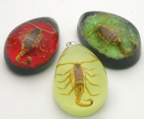 real insect pendants keychains wholesale supplier canada amber glow ... 3fb956cc1b36